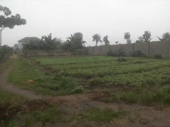 a Lucrative 1 Plot of Land in a Lucrative Area, Farm Road, Rumuduru, Port Harcourt, Rivers, Residential Land for Sale