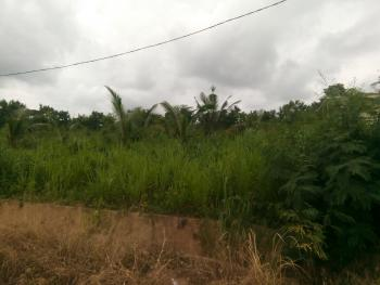 Fully Serviced Land of 4,500sqm Intended for Events Centre and Hospitality Purposes, Opposite Palms Shopping Mall (shoprite), Ring Road, Ibadan, Oyo, Commercial Land for Rent