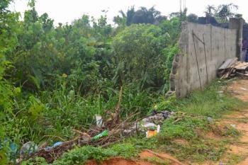 Land, Full Plot Allocation, Igbogbo Millenium Estate, Igbogbo, Ikorodu, Lagos, Residential Land for Sale