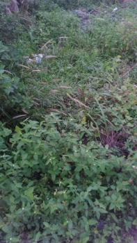 Land with Deed of Consent, Ndokwa West, Delta, Mixed-use Land for Sale
