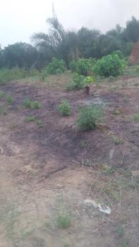 Half Plot of Land with a 4 Bedrooms Flat Foundation in Jumofak Ikd, Igbo Oluwo Estate Jumofak Estate Ikorodu, Jumofak, Ikorodu, Lagos, Residential Land for Sale