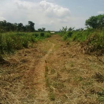 Land, Kajola Village Onigbedu/dangote Road, Ibese, Ewekoro, Ogun, Residential Land for Sale