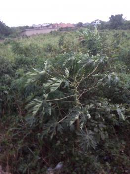 Dry Land, Lusada, Ado-odo/ota, Ogun, Commercial Land for Sale