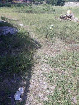 4000sqm Waterview Land, Residential Area, J Zone, Banana Island, Ikoyi, Lagos, Residential Land for Sale
