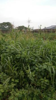 100feet By 10feet Community Land at Obazagbon and Offunwegbe,benin City, Edo Stte., Benin, Oredo, Edo, Land for Sale