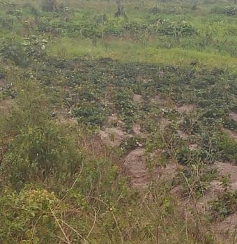 120 Acres of Dry Land on Water Front, Erekite Town, Aradagun, Badagry, Lagos, Mixed-use Land for Sale