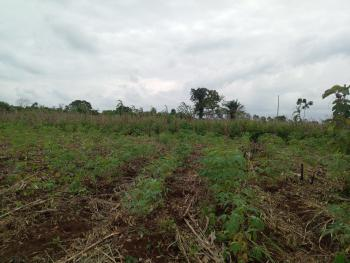 15 Acres of Land at Odeda in Ogun State, Ogunmakin Road, Odeda, Ogun, Mixed-use Land for Sale