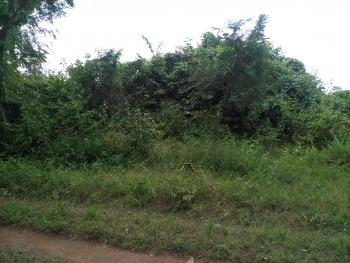 Over 5000 Acres of Land, Oja Odan Road, Yewa North, Ogun, Mixed-use Land for Sale
