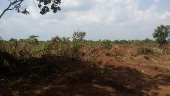 Dry Land, Isiagu Awka Igbariam, Awka, Anambra, Mixed-use Land for Sale