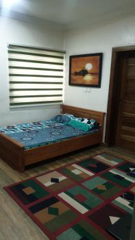 Furnished Studio Apartment with Excellent Facilities, Samuel Olusola Oguntuase Close, Off Ajifoluke Avenue, Jakande, Lekki, Lagos, Mini Flat for Rent