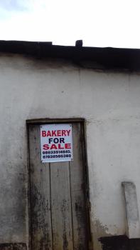 Land, Abule Alfa, Off Ori Okuta, Agric, Ikorodu, Lagos, Mixed-use Land for Sale