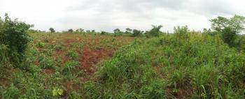 10 Acres of Land, Asa Olowo Village, Papa - Ilaro Expressroad, Ewekoro, Ogun, Residential Land for Sale