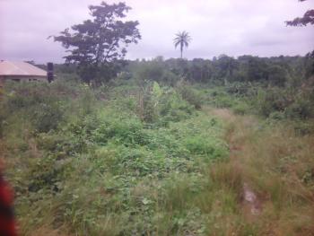 Genuine 1 Acre of Farm Land @kila,5min Away From Apata, Kila, Along Apata  Abeokuta Road, Apata, Ibadan, Oyo, Mixed-use Land for Sale