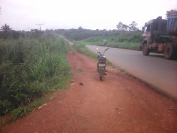 Genuine 1 Acre of Farm Land @kila,10min Away From Apata, Kila, Along Apata  Abeokuta Road, Apata, Ibadan, Oyo, Mixed-use Land for Sale