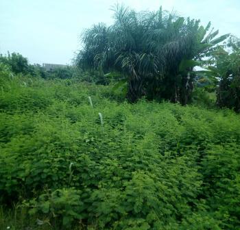 942sqm Dry Land, Block 25, Lekki Phase 2, Lekki, Lagos, Residential Land for Sale