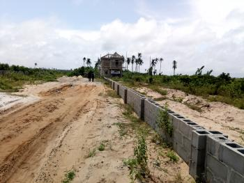 Cheap Dry Land with Global C of O, Along Free Trade Zone, Just 3mins Drive From Dangote Refinery, Orimedu, Ibeju Lekki, Lagos, Residential Land for Sale