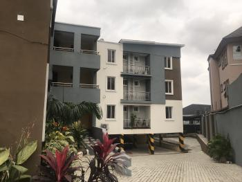 Newly Built 3 Bedroom Flat and a Room Boys Quarter, Ajao Estate Anthony, Anthony, Maryland, Lagos, Flat for Sale
