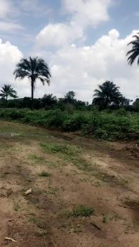 Land, Ipo Omagwa, Obio-akpor, Rivers, Mixed-use Land for Sale