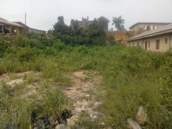 Full Plot of Land, Corner Pic, Dry Land Measuring 795 Sqm, Ojokoro Road, Landmark Intl School Axis, Agric, Ikorodu, Lagos, Mixed-use Land for Sale