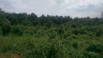 1 Full Acre of Land, Igbo Ora Road, Near Obadu Rock, Opeji Local Government, Abeokuta North, Ogun, Mixed-use Land for Sale