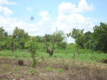 3.5 Hectares of  Farmland, Paiko Village of Gwagwalada Area Council, Gwagwalada, Abuja, Commercial Land for Sale