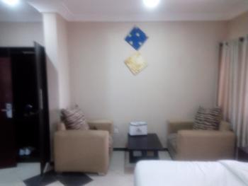 1 Bedroom Flat, Maitama District, Abuja, Mini Flat Short Let