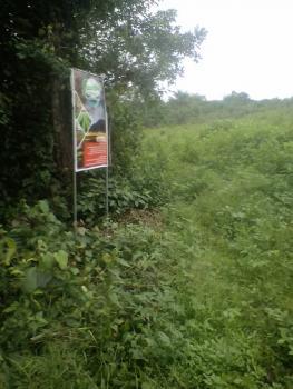 Farm Land, 2, Jaye Oyedotun, Gra, Magodo, Lagos, Mixed-use Land for Sale