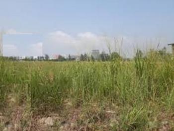 a Dry Land for Tank Farm Measuring 13 Acres, Ijegun, Ikotun, Lagos, Mixed-use Land for Sale