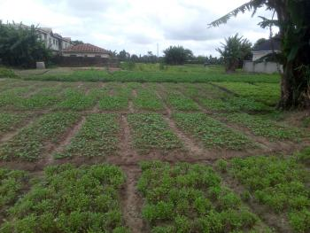 1125 Square Meter of Land Fenced and Gated, Post Service Housing Development Estate, Iba, Ojo, Lagos, Residential Land for Sale