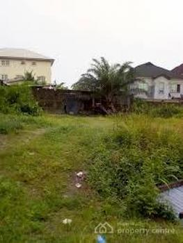 Full Plot of Land, University View Estate, Ajah, Lagos, Residential Land for Sale