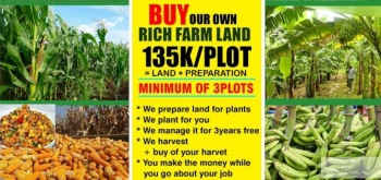 7 Plots of Land for Agricultural Investment, Abule-ojo Village, in Ipara- Remo, Around Ogere, Ogun, Commercial Land for Sale