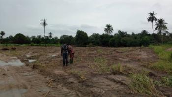 Dry Land for Farming and Livestock, Epe Town, Epe, Lagos, Commercial Land for Sale