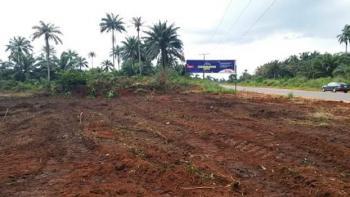 Cedarwood City, Ulakwo, 5 Minutes Drive Before Sam Mbakwe Intl Airport, Owerri, Imo, Mixed-use Land for Sale
