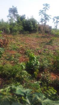 a Plot of Land, Ilara Town, Ojigo, Ogun, Mixed-use Land for Sale