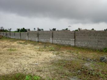 100x100 Land, Nnemiyi Layout Obodogba Okpanam, Oshimili North, Delta, Residential Land for Sale