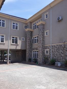 Tastefully Built & Serviced 3 Bedroom Apartment  with Domestic Quarters, Off Ibb Boulevard Way, Maitama District, Abuja, Flat for Rent