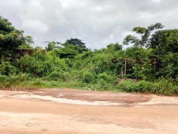 100feet By 100feet, Igbinosa Street Off Amagba Road Gra, Adjacent Owen Logistic Petroleum Station, Benin, Oredo, Edo, Land for Sale