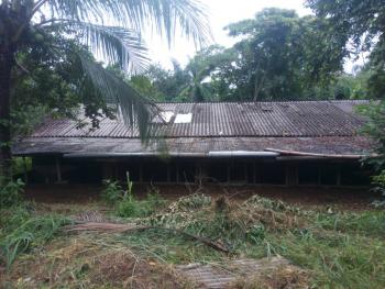 Luxurious Farm, Umuahia, Abia, Industrial Land for Sale