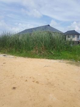 Land with Excision, Before Awoyaya, Ogogoro, Ibeju Lekki, Lagos, Residential Land for Sale