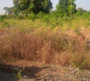 1000 Square Meters Land, Kuchakwo 3, Kuje, Abuja, Residential Land for Sale