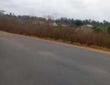 Legitimate Multipurpose Function Land, Ajuloolorun Ventures Land, Opp. Deyonu Filling Station,  Eleweran, Before Funaab Campus, Odeda, Ogun, Mixed-use Land for Sale