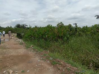 Cheap Acres of Land, Festac, Isolo, Lagos, Mixed-use Land for Sale