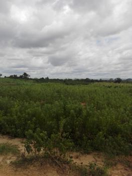 a Plot of Land, Oshimili North, Delta, Mixed-use Land for Sale