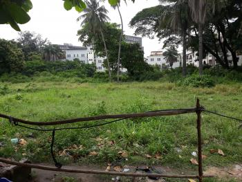 Cheapest 6500sqm Fenced Land for Sale, 2nd Avenue, Old Ikoyi, Ikoyi, Lagos, Mixed-use Land for Sale