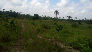 New Land for Any Business. We Wait for You!!!, Sagamu Benin Express Way, Ijebu Ode, Ogun, Commercial Land for Sale