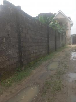 Standard 2 Plot of Land in a Very Good Neighborhood, Farm Road 2, Eliozu, Port Harcourt, Rivers, Residential Land for Sale
