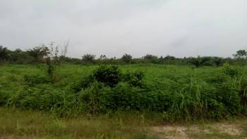 Farm Your Way Into The Future Own a Farm Land, Ketu Epe, Epe, Lagos, Commercial Land for Sale