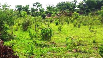 Plot of Land with Good Title., Isiu, Ikorodu, Lagos, Mixed-use Land for Sale
