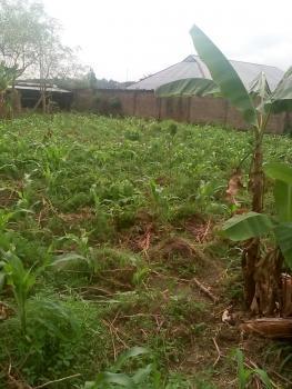 Residential Land, Around Neubatosh Area, Osogbo, Osun, Residential Land for Sale