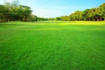 Vacant Land, Lakowe, Ibeju Lekki, Lagos, Residential Land for Sale
